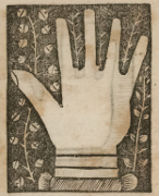 Image du livre: Éloge de la main, par Henri Focillon (3)